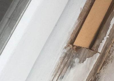 Timbercare repairs  1